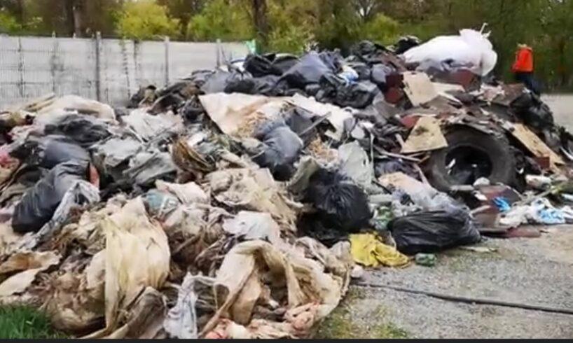 atentie peste 500 de mureseni au strans 2 000 mii de saci de gunoaie lasate in urma de multi nesimtiti
