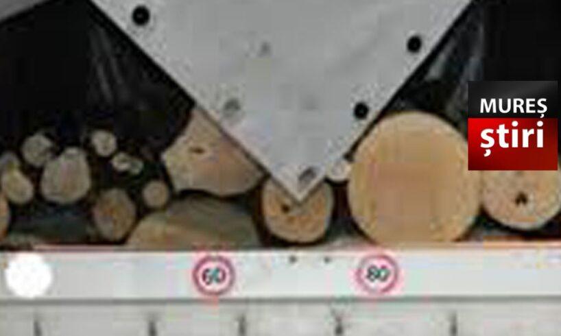 politia un targumuresean prins cu duba plina de lemn transportat ilegal