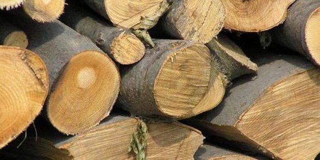 transport-de-material-lemnos-confiscat-de-politisti