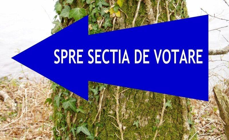 romanii-sunt-chemati-duminica-la-scrutinul-pentru-euroarlamentare-si-la-referendum