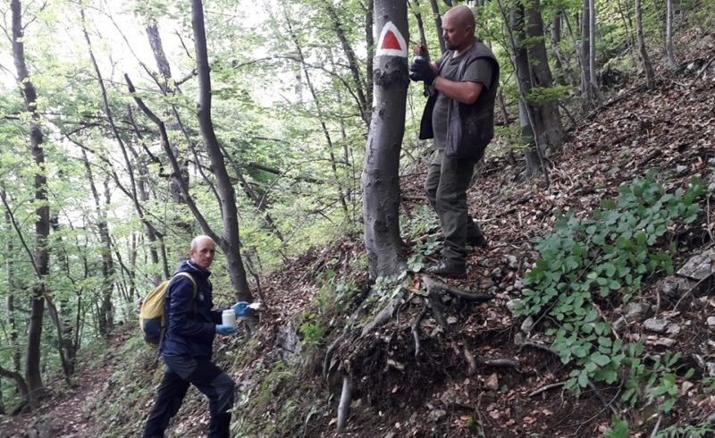 traseele-turistice-de-pe-muntele-tampa-au-fost-reabilitate