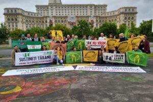proteste ale micilor agricultori in capitala