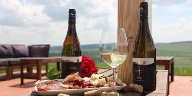 villa vinea premiata cu aur pentru explozia aromata din vinurile sale speciale