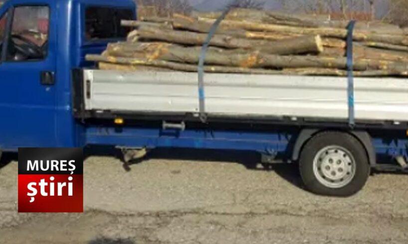 muresean prins cu masina plina de lemn transportat ilegal amendat si lasat fara marfa