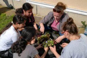 foto o zi in lumea florilor la centrul scolar de educatie incluziva nr 3 reghin