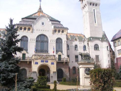 activitatea economica in judet la colegiul prefectural