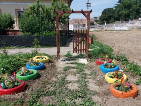 activitati de educatie ecologica la scoala gimnaziala traian tarnaveni