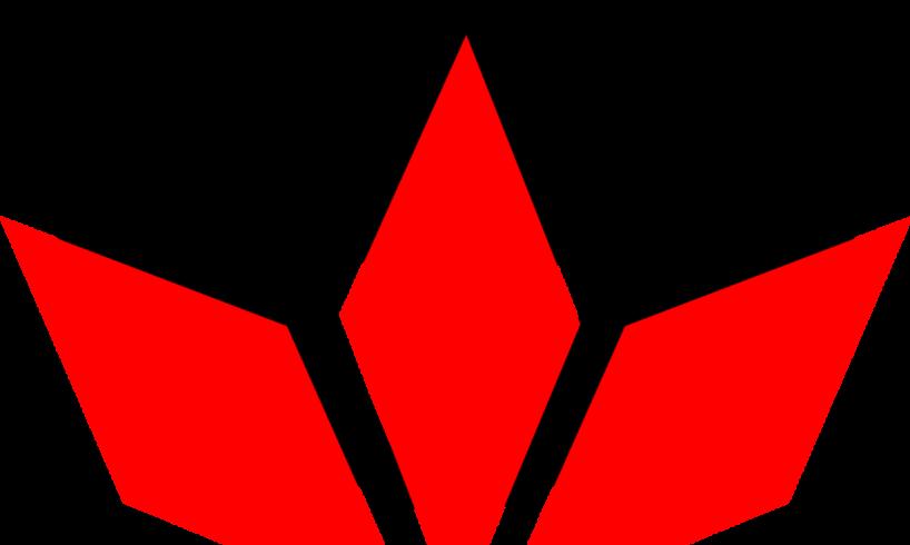forurile-decizionale-si-executive-din-cadrul-udmr-targu-mures-decapitate