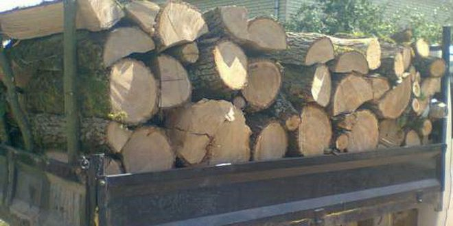 transporta-lemne-cu-o-autoutilitara,-fara-sa-detina-permis-de-conducere