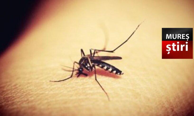 avertizare privind cresterea riscului de aparitie a infectiilor cu virusul west nile in mures