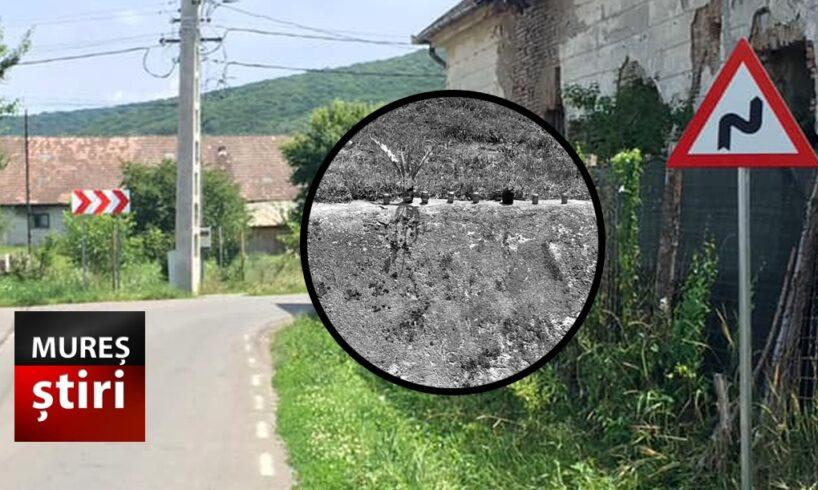 foto-primele-masuri-luate-dupa-tragedia-in-care-un-biciclist-si-a-pierdut-viata!-rip.