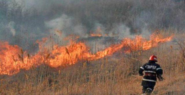 incendiu-vegetatie-uscata-in-sangeorgiu-de-mures