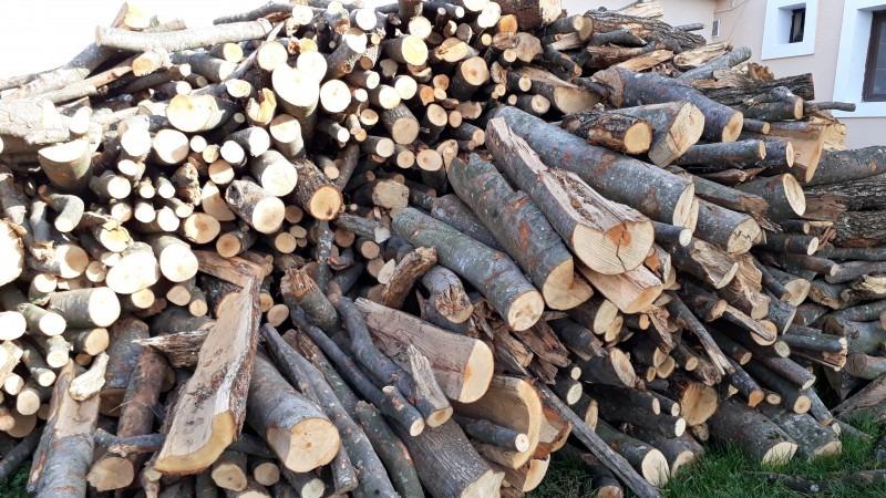 muresenii-pot-depune-cereri-pentru-lemn-de-foc