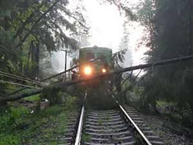 trenul-regio-4145-stationeaza-la-cf-saratel,-arbore-prabusit-din-cauza-vantului-puternic