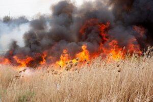 lipsa-ploilor-si-temperaturile-ridicate-au-favorizat-aparitia-unor-incendii-de-vegetatie-pe-suprafete-extinse