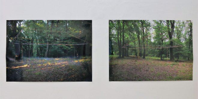 "5-artisti,-o-rezidenta-si-o-expozitie-–-""padurea-rotunda-viii""-la-camera-k'arte"