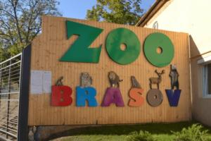 aproape 3 milioane de lei pentru adapostul de pasari exotice de la zoo brasov