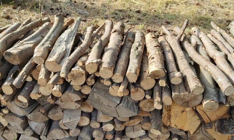 aprovizionarea-populatiei-cu-lemn-de-foc-a-fost-demarata-in-judetele-mures-si-covasna