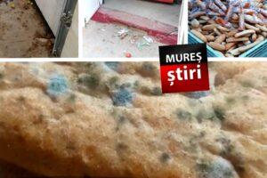 imagini-cu-dezastrul-descoperit-la-firma-care-distribuia-cornuri-cu-mucegai-elevilor-mureseni!