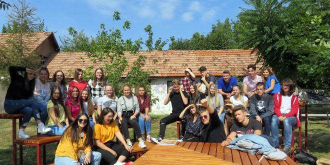 proiecte cu si pentru tineri din comunitate la liceul tehnologic lucian blaga