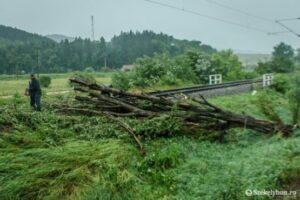 copacul-cazut-pe-calea-ferata-a-fost-indepartat