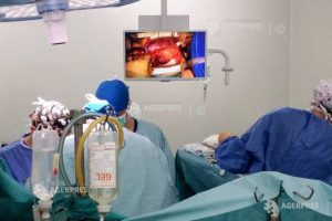 targu mures al cincilea transplant de cord din 2019