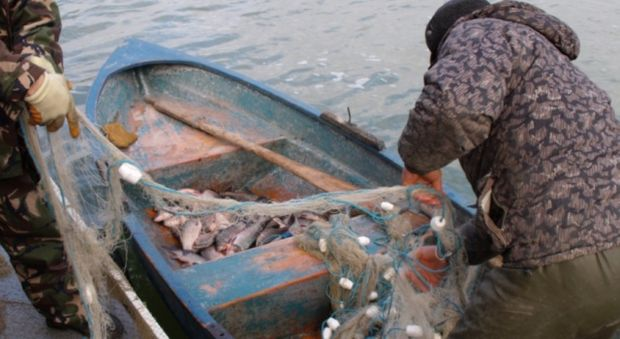 braconier-depistat-cu-300-de-kilograme-de-peste-prins-din-raul-olt
