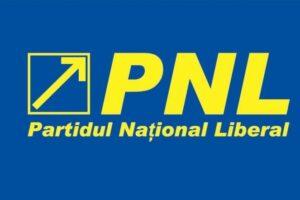 pnl-stabileste-strategia-dupa-anuntarea-rezultatelor-oficiale