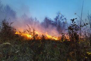 de-mai-bine-de-30-de-ore-incendiul-de-litiera-din-localitatea-ohaba-nu-poate-fi-stins