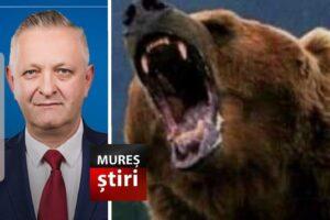 senator-muresean:-este-prea-mult!-un-adevarat-asediu-al-ursilor!-propun-extragerea-de-indata!