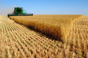 agentia-de-plati-si-interventie-pentru-agricultura-a-autorizat-la-plata-aproximativ-710.000-de-fermieri