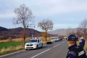 update:-urs-accidentat-pe-soseaua-sovata-–-praid