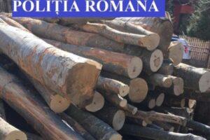 material-lemnos-in-valoare-de-30.000-de-lei-confiscat-de-politie!