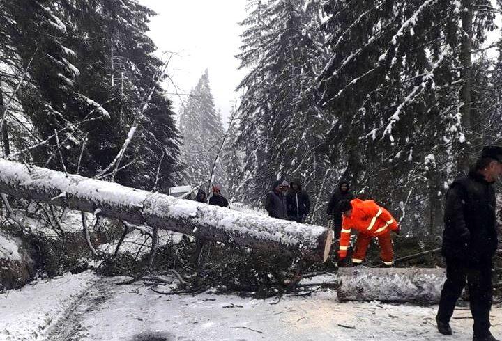 s a inchis circulatia pe dn 13b din cauza caderilor masive de arbori