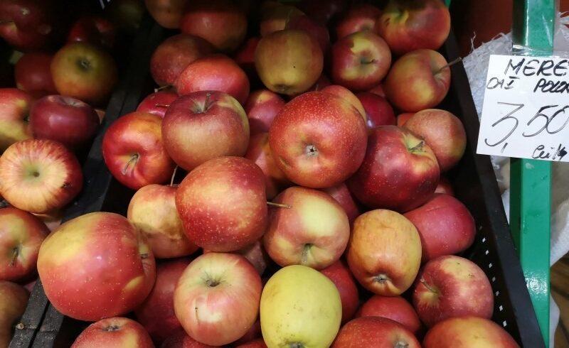 producatorii merelor de batos se tem de concurenta neloiala