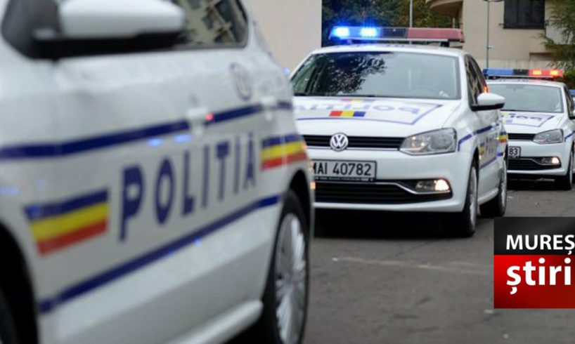 politia amenzi de aproape un sfert de milion de lei si 55 de permise suspendate
