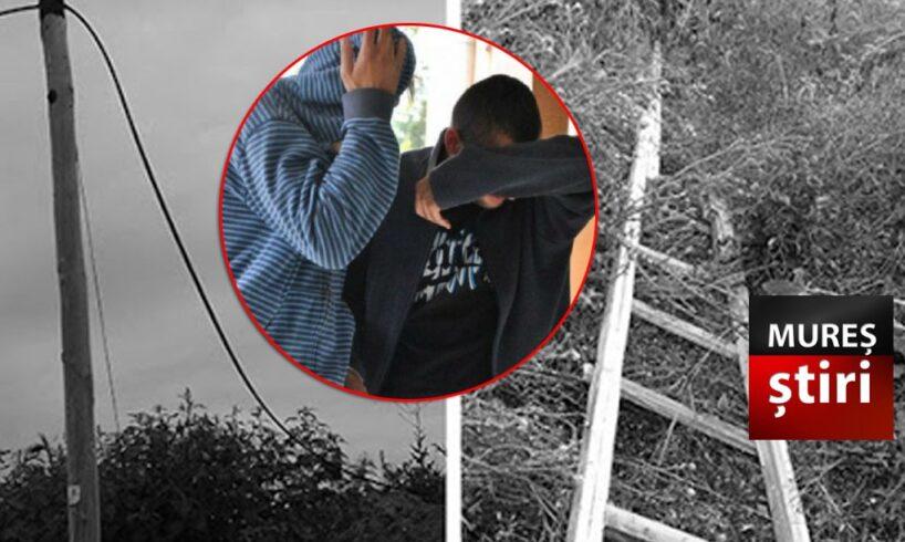 doi tineri mureseni s au tras singuri pe cablu