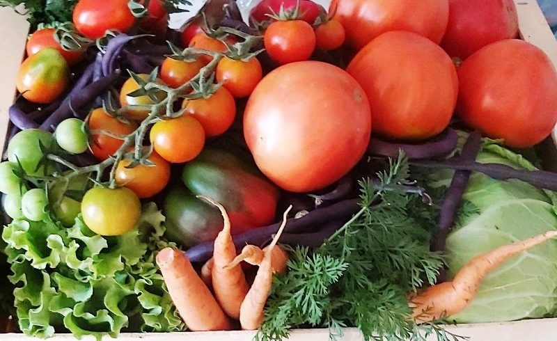 alimentele produse in romania nu sunt contaminate cu pesticide