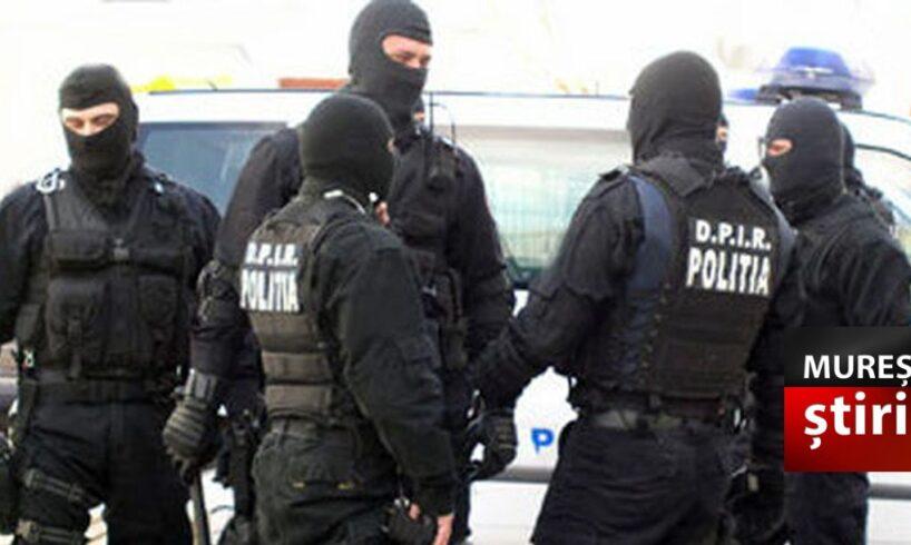 frauda de aproape jumatate de milion de euro infractorii prinsi cu ajutorul politistilor mureseni