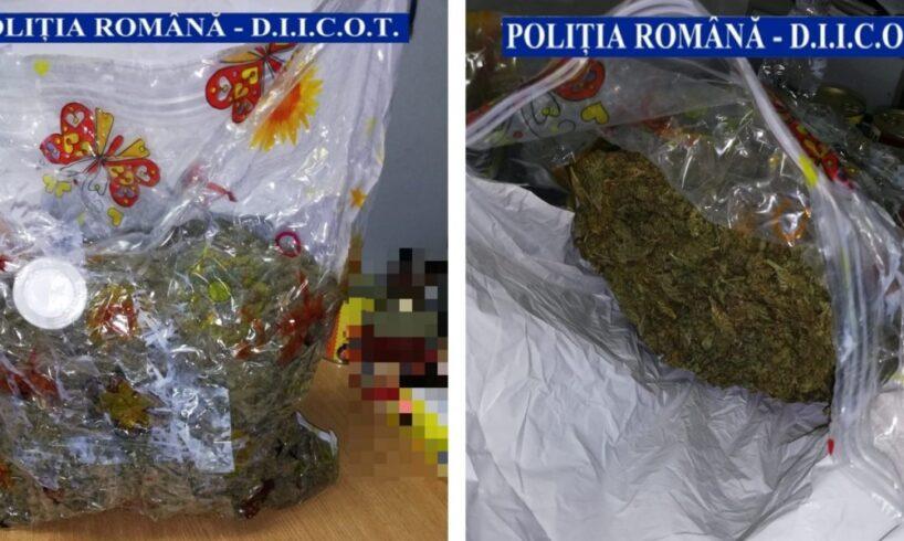 trei kg de canabis descoperite intr un colet de politistii brasoveni