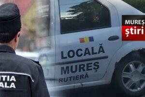 info.-politistii-locali-au-gasit-doua-placute-de-inmatriculare!