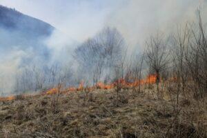 in-plina-pandemie,-in-mures-si-harghita-a-crescut-si-numarul-incendiilor-de-vegetatie