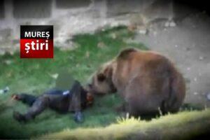 ursul-a-atacat-2-mureseni!-unul-se-afla-in-stare-grava