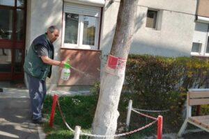 foto:-combaterea-stresului-covid-19-prin-voluntariatul-din-fata-blocului