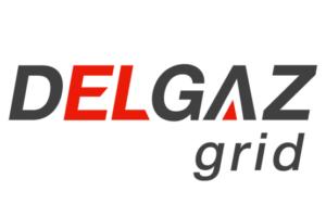 echipele-delgaz-grid-vor-fi-pe-teren,-dar-relatii-cu-publicul-exclusiv-online-si-telefonic