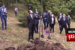 imagini-video-jenante-cu-premierul-plantand-un-copac-deja-plantat!