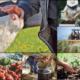 agricultura:-poate-fi-o-afacere-profitabila-pentru-tineri