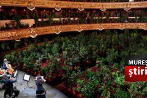 "opera-""liceu""-din-barcelona-s-a-redeschis-cu-un-concert-inedit!"