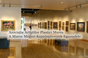 sediul-artistilor-plastici-din-targu-mures,-in-atentia-consilierilor-locali