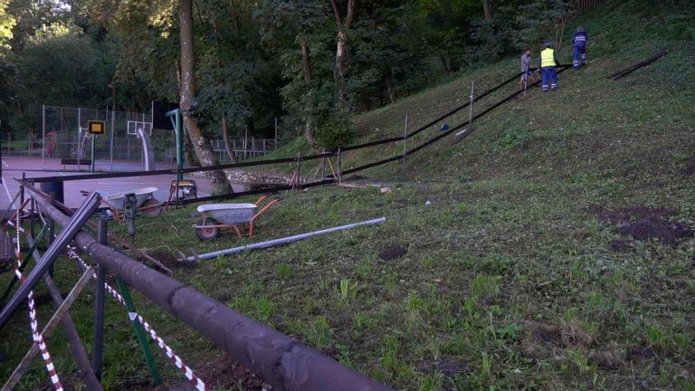 se-deschide-cel-mai-mare-parc-pentru-caini-din-brasov